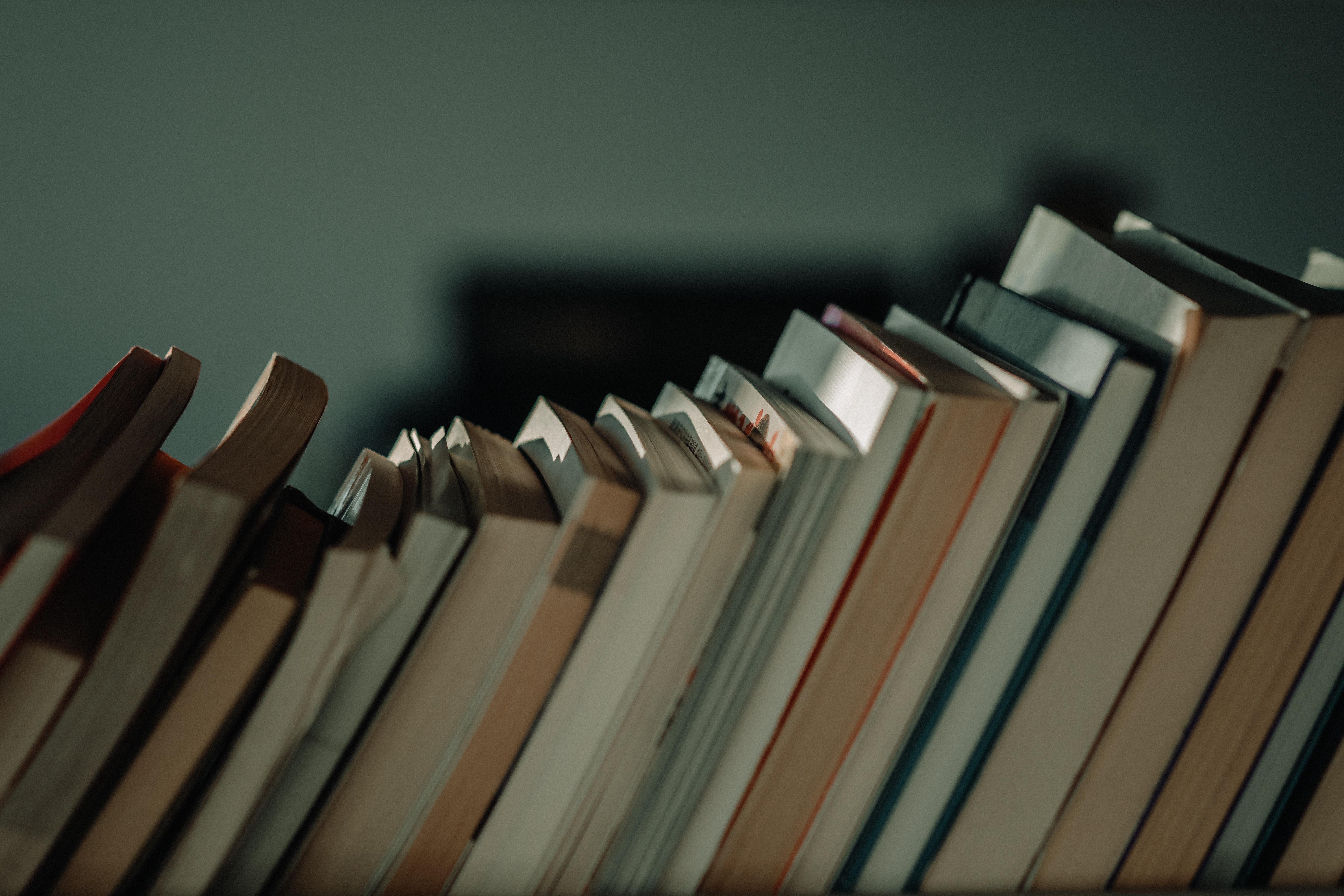 boekentips paulien vervoorn geloofwaardig spreken beter preken steengoed