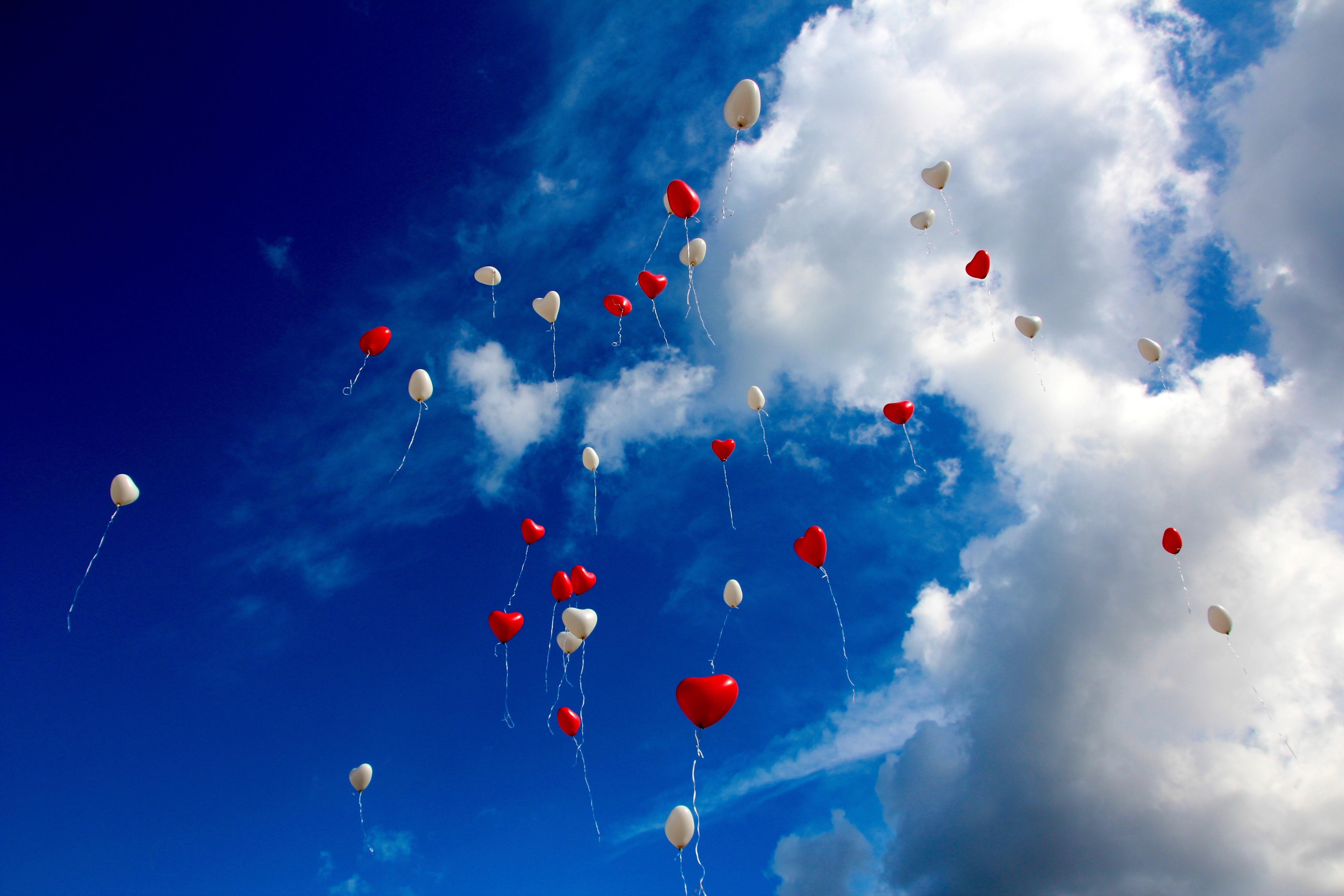 paulien vervoorn valentijn zwijmelen zij lacht event