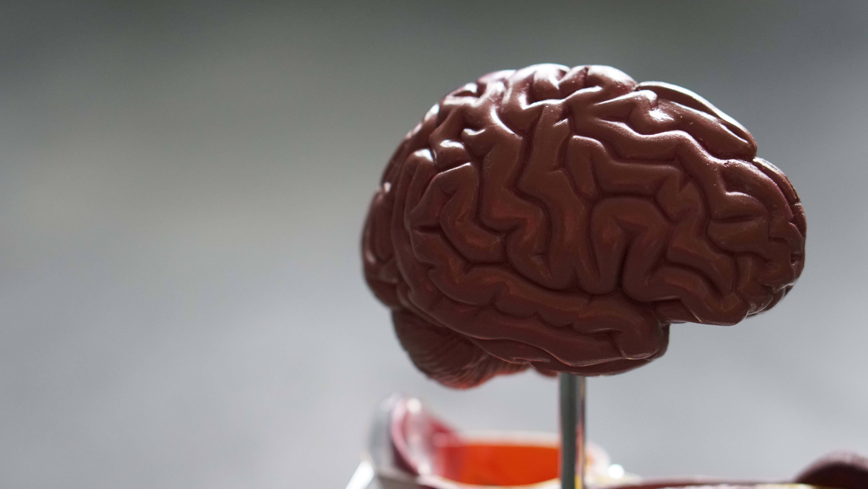 autisme paulien vervoorn preken geloofwaardig spreken alianna dijkstra